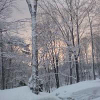 雪景色の白馬、、