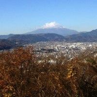 ミヤマホオジロなど 弘法山公園