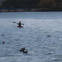 水上練習&陸上練習(H28.12.3)