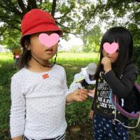 2017年6月23日(金)の【写真館】
