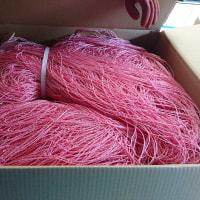 今年は海苔網を200枚買いました