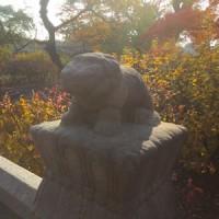 【連載】異国を旅して -韓国篇2-