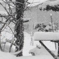 大雪  居間の引き出しを台所に移動