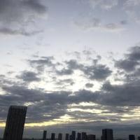11/29の朝の空