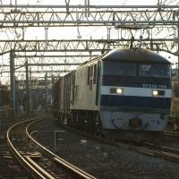 2017年1月17日  東海道本線  大船 EF210-164  8052レ