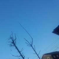 仙台の空2月26日、日曜日