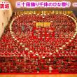 有機的連携 「三十段飾り千体の雛祭り」と「信州須坂しあわせ雛祭り」