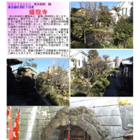 散策 「東京南西部-395」  蟠龍寺