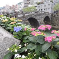紫陽花祭りが始まりました