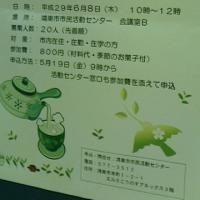 新茶到来!今後の予定〜!!