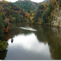 晩秋の彩り**亀山湖周辺