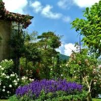 ムラーノの職人、箱根で花とコラボ!❛2❜