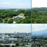 相模原麻溝公園「グリーンタワー」から「ランドマークタワー」を捉える!!