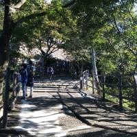 2016秋 山と城の旅(岐阜城は山登りの巻)