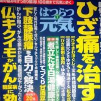 ガン・糖尿病 と フランス菊芋の関係~健康雑誌紹介  菊芋通販店・高城商店