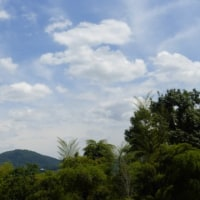 「里山」といわれてもイメージがわかない?