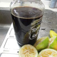 カボスポン酢作りました。水島シェフのハンバーグ作りに、驚き!挑戦!