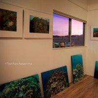 海 長島敏春写真展 (海と森のギャラリー)