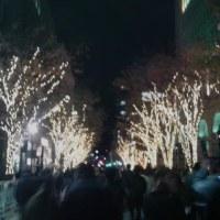 本日は第22回神戸ルミナリエへ。テーマは光の叙情詩。午後6時40分から列に。神戸市役所24階の展望台からの見学も含めて1時間。