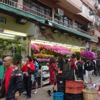 香港 雀鳥花園と花市場