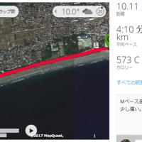 疑り深くMペース10km走。