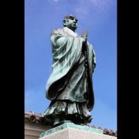 妙國寺「堺の寺といえば妙國寺、妙國寺といえばソテツ」貫首の自信。