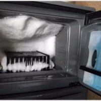 冷蔵庫に怪しい物が・・・