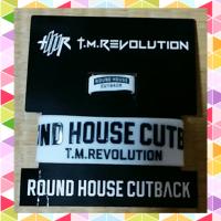 T.M.Revolutionのライブ