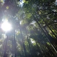 滋賀~京都~奈良