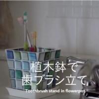 30秒で楽しむDIY講座  「植木鉢で歯ブラシ立て」
