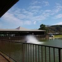 FISHUP 秋川湖 と リボンココ
