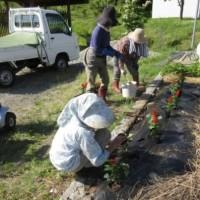 山裾集落の花植え 高齢者の出番