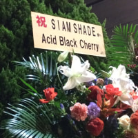 SIAM SHADE 10/20 20th Anniversary year 2015-2016「FINAL ROAD LAST SANCTUARY」at 日本武道館