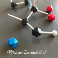 化学成分を知ろう