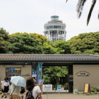 「江ノ島から鎌倉へ 2017年5月」(日帰り)