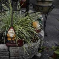 庭を彩る小物の数々