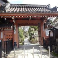 壇王法林寺の桃桜