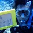 初ダイビングとベテラン体験ダイバー‼