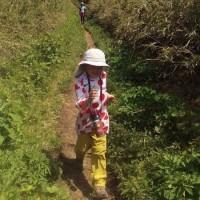 チビ登山第65座 夏迫る明神ヶ岳の稜線歩き