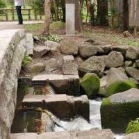 神田川を歩く3:下高井戸〜井の頭公園