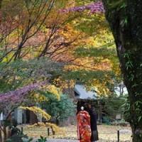 大安の日に東京・九品仏浄真寺で結婚式をあげる
