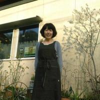 多摩美さん×pirikaさん×Atelier M の3コラボエプロンを着てみました♪