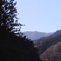 平成29年4月23日・今朝の東祖谷4.1℃