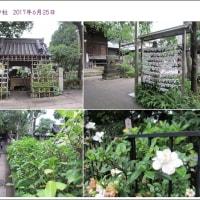 2017年6月白山神社