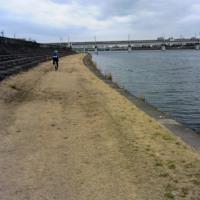 園田競馬場、伊丹空港のそばにこんなええ場所があったなんて・・・・初回掲載2016、3/6