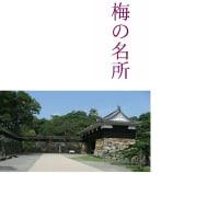 四国、高知、香川、徳島1,000kmの車旅、今年の初旅、南に向かって走ります。