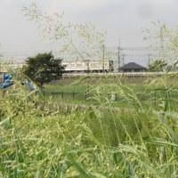一日一鉄!~鉄道写真家の中井精也さん