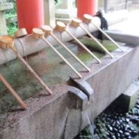 水無月の大祓い(石清水八幡宮)