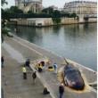 パリのど真ん中に、マッコウクジラが打ち上げられた!?