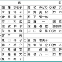 2008年2月藤沢市長選挙・市議会議員補選 2月10日告示17日投票